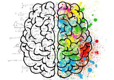 Curs de PNL (Programació Neurolingüística)
